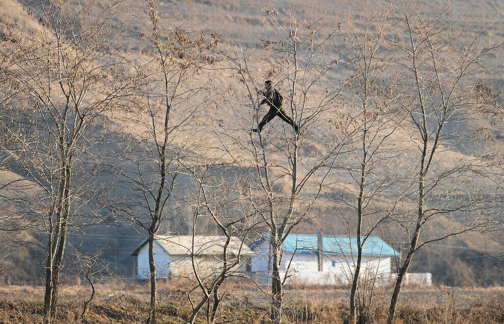 Cеверокорейский перебежчик рассказал, что был гимнастом и смог перепрыгнуть трехметровый забор на границе с Южной Кореей